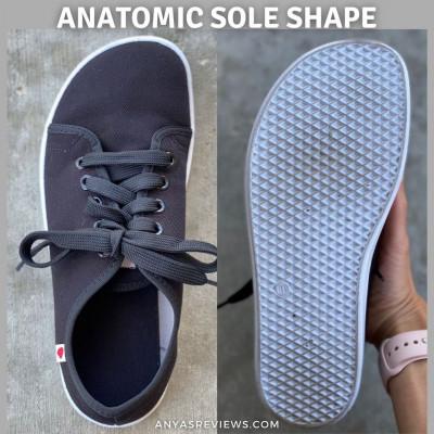 Anatomic Photo