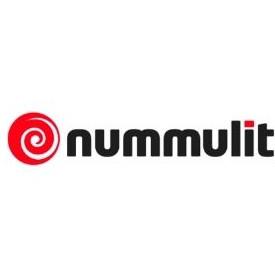Nummulit Logo